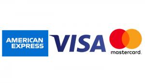 SASH Visa logo