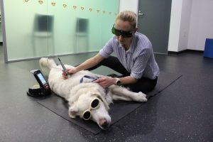 SASH therapeutic laser