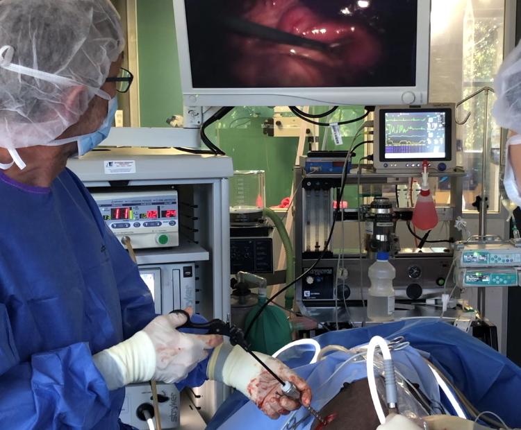 laparoscopic procedures