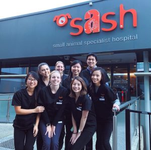 Sash Interns